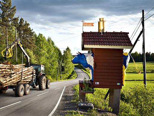 Maitomaaottelu - Mjölkkamppen, Jyrki Nisonen 2010