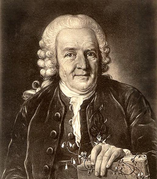 Carl von Linné 1707 - 1778.