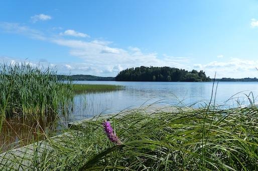 Kyrosjärvi 6.8.2013
