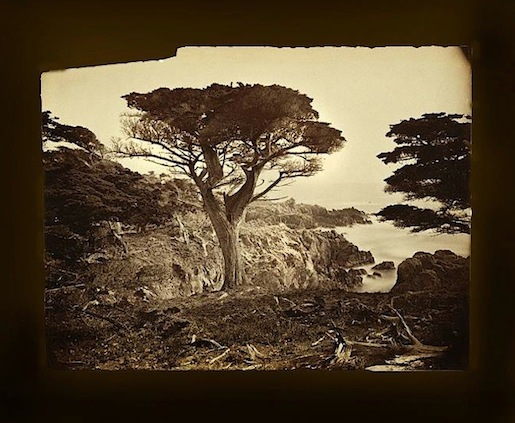 Paul Getty Collection, Carleton Watkins n.1880.