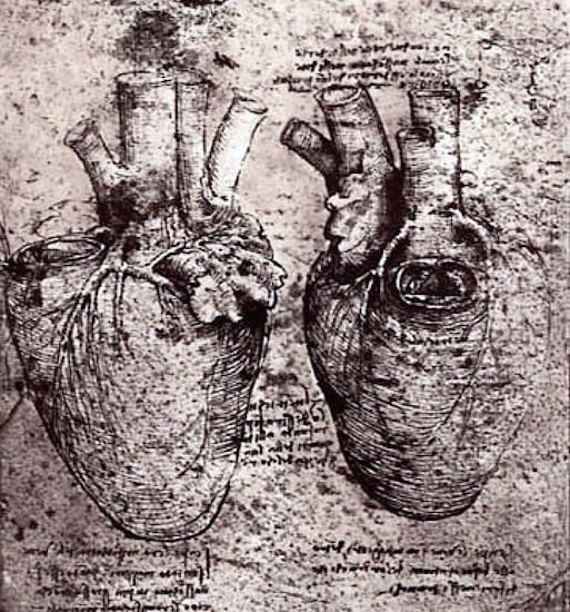 Piirros Leonardo da Vincin työpäiväkirja.